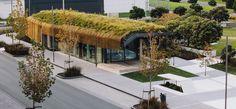 Te Kaitaka – The Cloak / Fearon Hay Architects