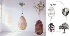 http://www.sante-nutrition.org/les-capsules-funeraires-permettent-devenir-arbre-mourez/