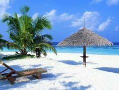 Tropical Beach!