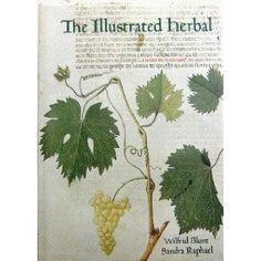The Illustrated Herbal (Manuscripts)