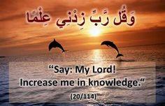 Verses of quran