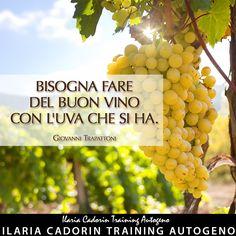 """""""Bisogna fare del buon vino con l'uva che si ha"""" - Giovanni Trapattoni  Ilaria Cadorin Training Autogeno, frasi, aforismi"""