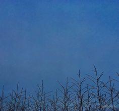 'winter sky' iPhone Wallet by lyshoseok Winter Sky, Iphone Wallet, Nature, Travel, Naturaleza, Viajes, Destinations, Traveling, Trips