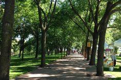 Gorgeous park by the Gateway Arch, St. Louis
