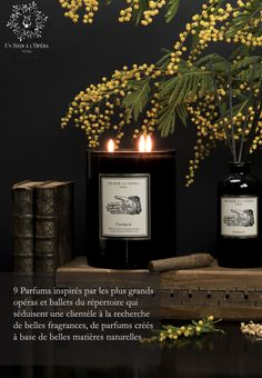 Candle Jars, Candles, Bloom, Ballet, Business, Inspiration, How To Make Candle, Nutcrackers, Cherry Blossom