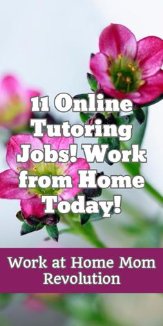 11 Online Tutoring Jobs! Work from Home Today! / Work at Home Mom Revolution