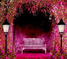 #pinkobsession