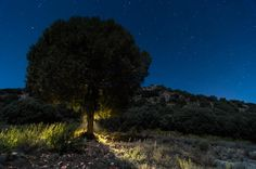 MUNDO SIN LIMITES-FOTOGRAFIANDO: El iluminado
