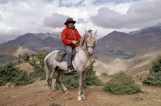 Nassim - 15.3hh Berber/Arab stallion in the High Atlas Mountains, Morocco