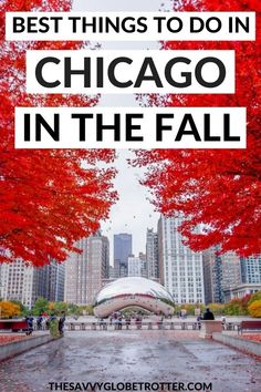Best fall themed things to do in Chicago in October and November.