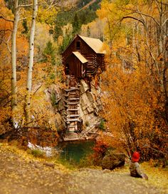 Log Cabin in the autumnal woods, Colorado // Chad Galloway Photography .If i could climb the stairs i would live there! Cabins And Cottages, Log Cabins, Off Grid Cabin, Cabins In The Woods, Abandoned Houses, Dream Rooms, Beautiful Places, House Beautiful, Places To Go