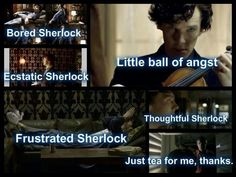 Sherlock Soft Kitty