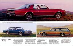1979 Chevrolet Caprice Classic. My 1st car was a 2 door 1978...what a classic!