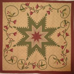 FEATHERED STAR QUILT......................PC........................feathered star with applique
