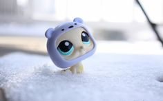 Littlest Pet Shop walrus with polar bear hat
