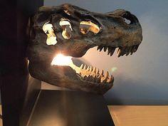 Dinosaur light   Etsy Dinosaur Light, Unique Gifts, Handmade Gifts, Jurassic World, T Rex, Christmas Shopping, Fossils, Night Light, Lion Sculpture