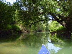 River Odra - north-central Croatia