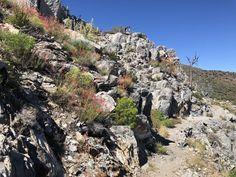 Leselaunen / Wochenrückblick   #Leselaunen #PCTHike #Wochenrückblick #Wochenrückblick #Natur #Reisen #USA #Kalifornien #Berge Pacific Crest Trail, Grand Canyon, Usa, Nature, Travel, Water Sources, California, Bowties, Mountains