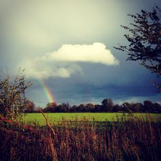 Freaky weather: a wispy white cloud appeared over the dark rainy skies and then a rainbow emerged from the shadows and all of a sudden the sky cracked and a sunbeam lit up the field. #rainbow #clouds #rainclouds #weird #weather #field #landscape #bucolic #pastoral #english #nature #freaky #weather #wild #love #romance