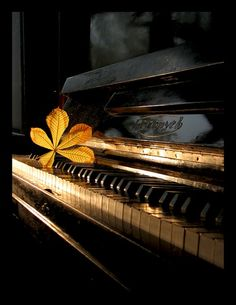 Oh the stories that old piano could tell ... I remember playing the piano as a young girl. I loved it.