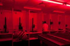 The darkroom i use