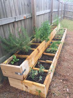 Herb garden is back in business! Herb Garden Design, Backyard Garden Design, Vegetable Garden Design, Vegetable Bed, Backyard Landscaping, Small Herb Gardens, Small Backyard Gardens, Outdoor Gardens, Raised Herb Garden