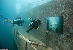 Coolest gallery ever! Exhibit: Divers, pictured, view the photographs adorning the walls of the shipwreck
