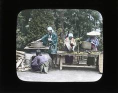 Firing tea leaves :: Japanese Lantern Slides (Dominican University)