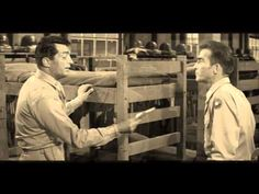 pictures of dean martin and sonny | Dean Martin - Bye Bye Blackbird - YouTube