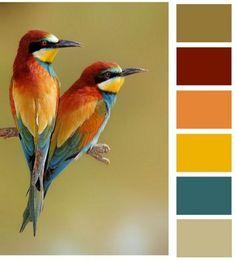 35 Astonishing Mediterranean Garden Design Ideas For Your Backyard Ideas - Home Decoration Color Schemes Colour Palettes, Nature Color Palette, Room Color Schemes, Colour Pallete, Fall Color Schemes, Good Colour Combinations, Red Color Combinations, Paint Schemes, Mediterranean Garden Design