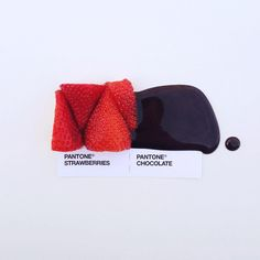 food as color swatches- Clever and Appetizing Pantone Swatch Food Pairings - My Modern Metropolis