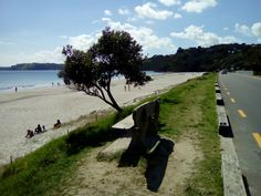 Auckland, Waiheke Island, Excursion, New Zealand, Places Ive Been, Beach, Water, Outdoor, Landscape