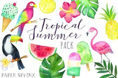 Watercolor Tropical Clipart Pack by PaperSphinx on @creativemarket