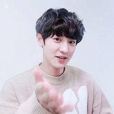 Animated gif about love in exo by 도가 on We Heart It Foto Chanyeol Exo, Chanyeol Cute, Exo Chanyeol, Kyungsoo, K Pop, The Late Late Show, Chanbaek, Chansoo, Xiu Min