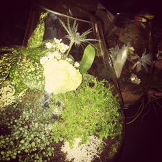 Terrarium by Sprout at The James bridal event