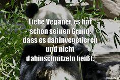 Liebe Veganer, es hat schon seinen Grund, dass es dahinvegetieren und nicht dahinschnitzeln heißt. ... gefunden auf https://www.istdaslustig.de/spruch/1538 #lustig #sprüche #fun #spass