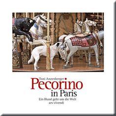 PECORINO IN PARIS BY TONI ANZENBERGER