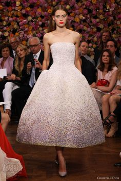 I want somewhere to wear this!! christian-dior-fall-2012-2013-couture-strapless-pointillist-degrade-dress.jpg (600×900)