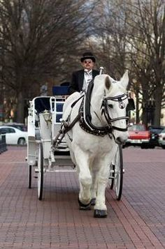 These carriage rides are given every weekend on Main St. Greenville SC