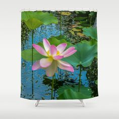 Lotus In The Pond 4 Shower Curtain by Lanjee  http://society6.com/product/lotus-in-the-pond-4_shower-curtain