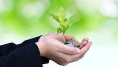Συμβουλές για να οργανώσετε τα οικονομικά σας