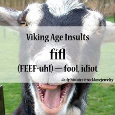 okay, this is my new insult. Fifls!!!