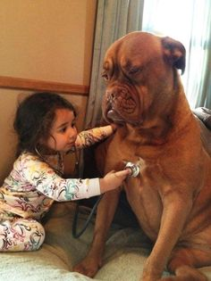 15 σκυλιά που θα έκαναν τα πάντα για τα παιδιά! - Αφύπνιση Συνείδησης