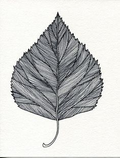 Your place to buy and sell all things handmade Leaf Drawing, Nature Drawing, Plant Drawing, Henna Feather, Feather Art, Feather Drawing, Leaves Sketch, Natur Tattoos, Ink Pen Drawings