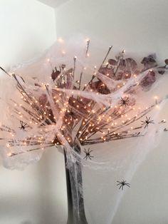 Mijn spinnenweb.