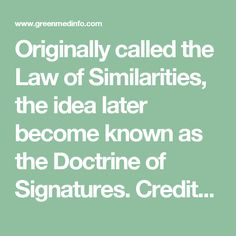 Originally called the Law of Similarities, the idea later become known as the Doctrine of Signatures. Credited to Renaissance physician and alchemist, Paracelsus, this doctrine contends that Earth is governed by the microcosm-macrocosm principle: as within, so without, and as above, so below.