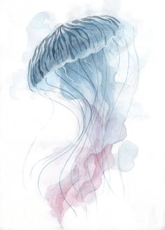 - Hottest Totally Free Sea Animals Drawing Concepts, 17 Ideas For Watercolor Tattoos With Jellyfish I - Jellyfish Facts, Jellyfish Drawing, Watercolor Jellyfish, Jellyfish Painting, Jellyfish Tank, Jellyfish Tattoo, Watercolor Tattoo, Jellyfish Quotes, Jellyfish Light