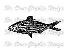 Vintage Fish Graphic  Fish Vector Clip Art  by DrCrowGraphicDesign