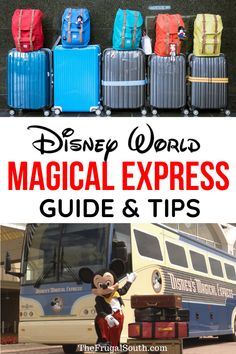 Everything you need to know about Disney magical express! Disney bus to airport and Disney World airport transfers are free with any Disney resort reservation. How to use the Disney's Magical Express bus. #magicalexpress #disneyworldairport #orlandoairport Disney World Guide, Disney World Hotels, Walt Disney World Vacations, Disney World Tips And Tricks, Disney Tips, Disney World Resorts, Disney Parks, Orlando Disney, Disney Worlds