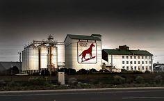 'Dingo Flour Mill - Fremantle Western Australia ' Poster by Perth Western Australia, Australia Travel, Great Places, Beautiful Places, Local Events, Big Island, Historic Homes, Capital City, Wild West